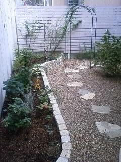 日陰の庭、アナベルを植える