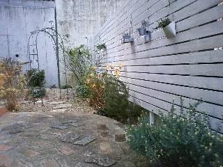 冬の北の庭